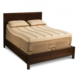 Tempur-Contour GrandBed with Adjustable Base