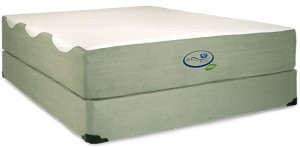 sleep sense biomax mattress