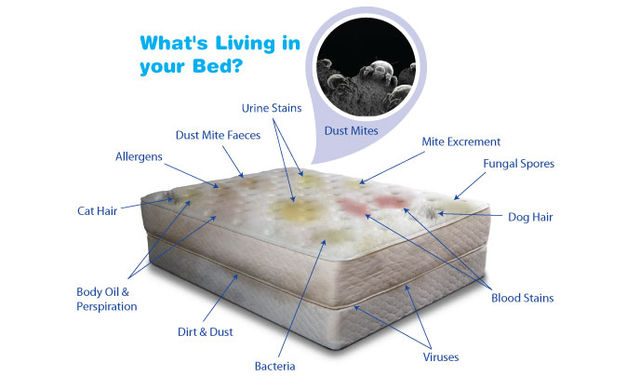 Mattress Care and Cleaning Tips for better health and rest